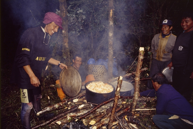 95 B 58 28b 1995 Chombi Cooking Mushrooms