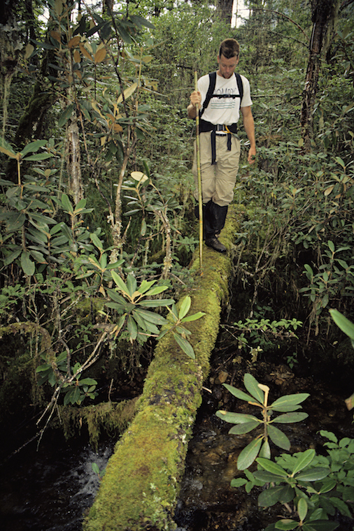 95 B 64 29 1995 TG Todd Crossing Mossy Log